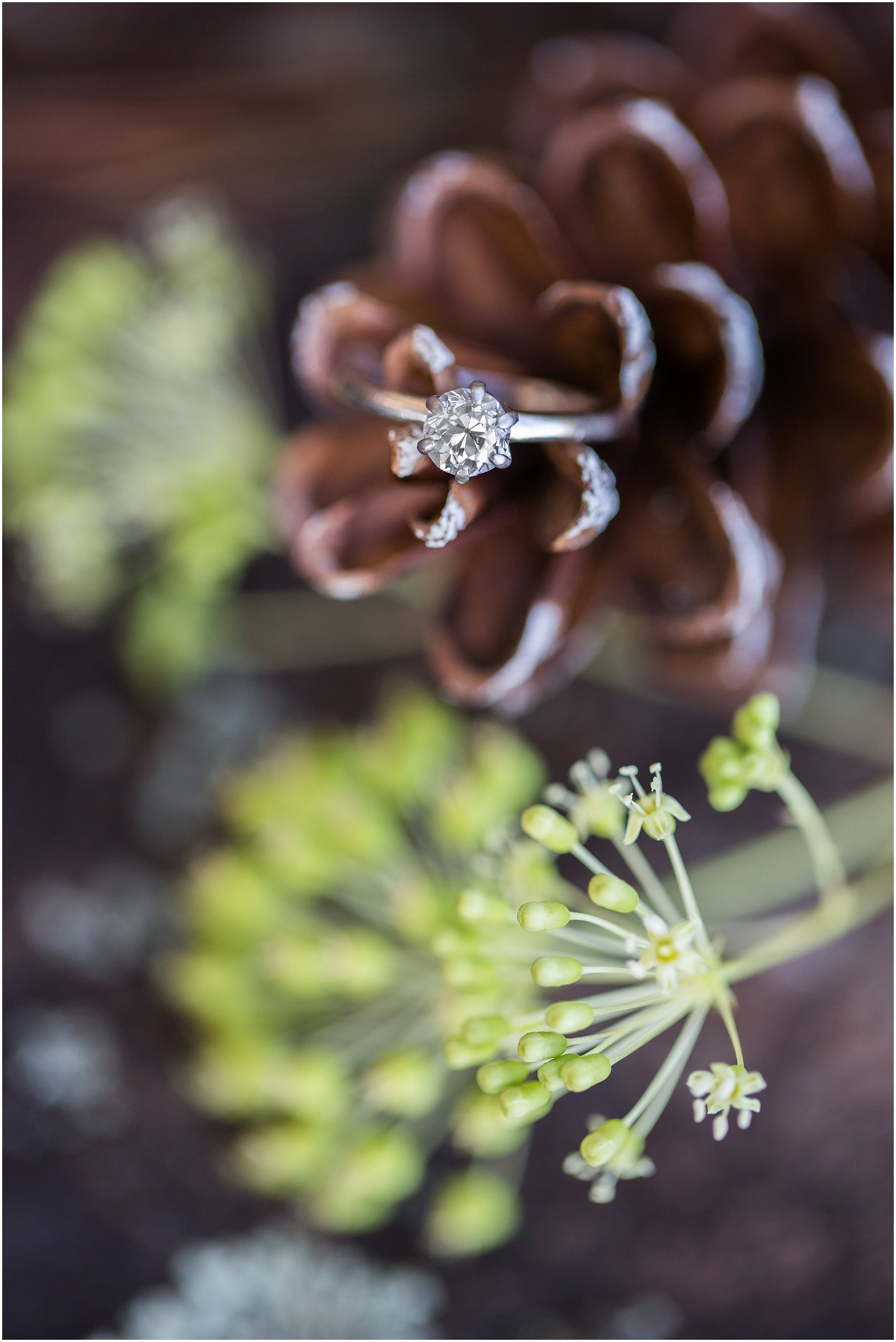 Engagement ring with pinecone and Queen Anne's Lace