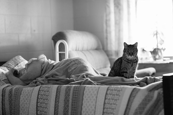 Cat on Sleeping Woman's Bed