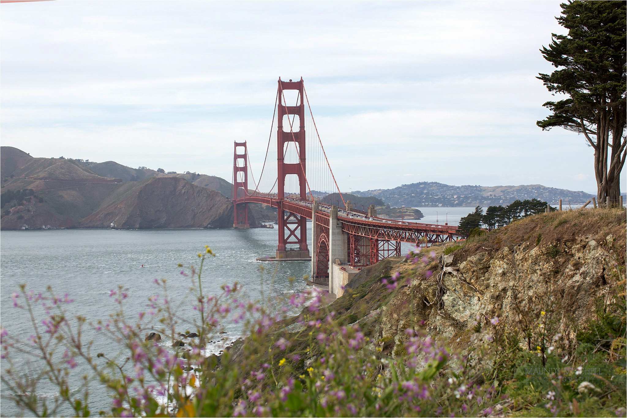 The Golden Gate Bridge with Wildflowers