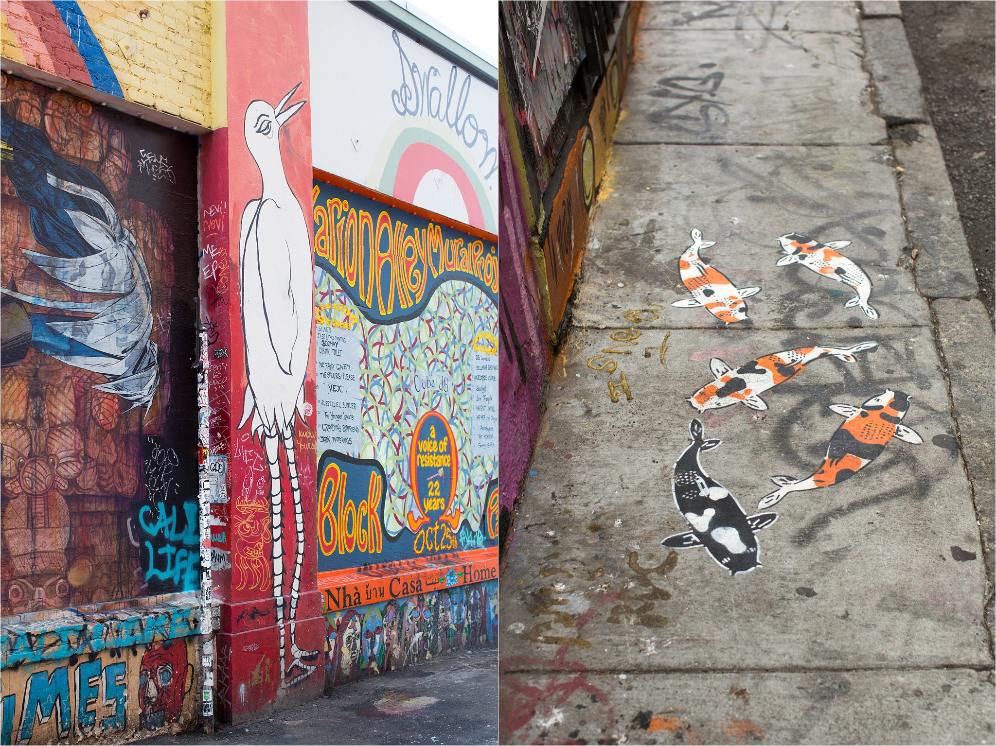 Clarion Alley Murals Bird and Goldfish
