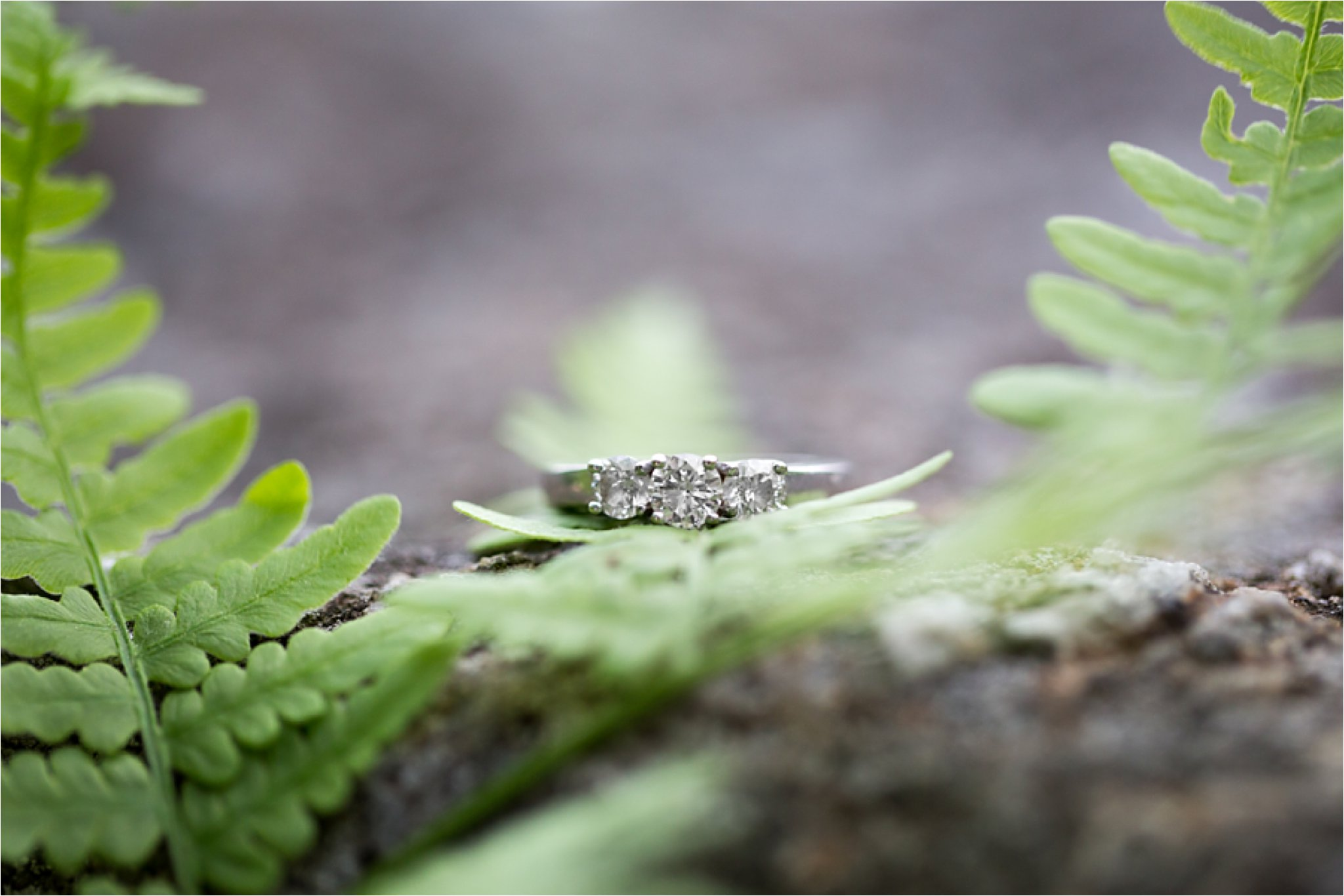 Three-Stone Diamond Engagement Ring with Ferns