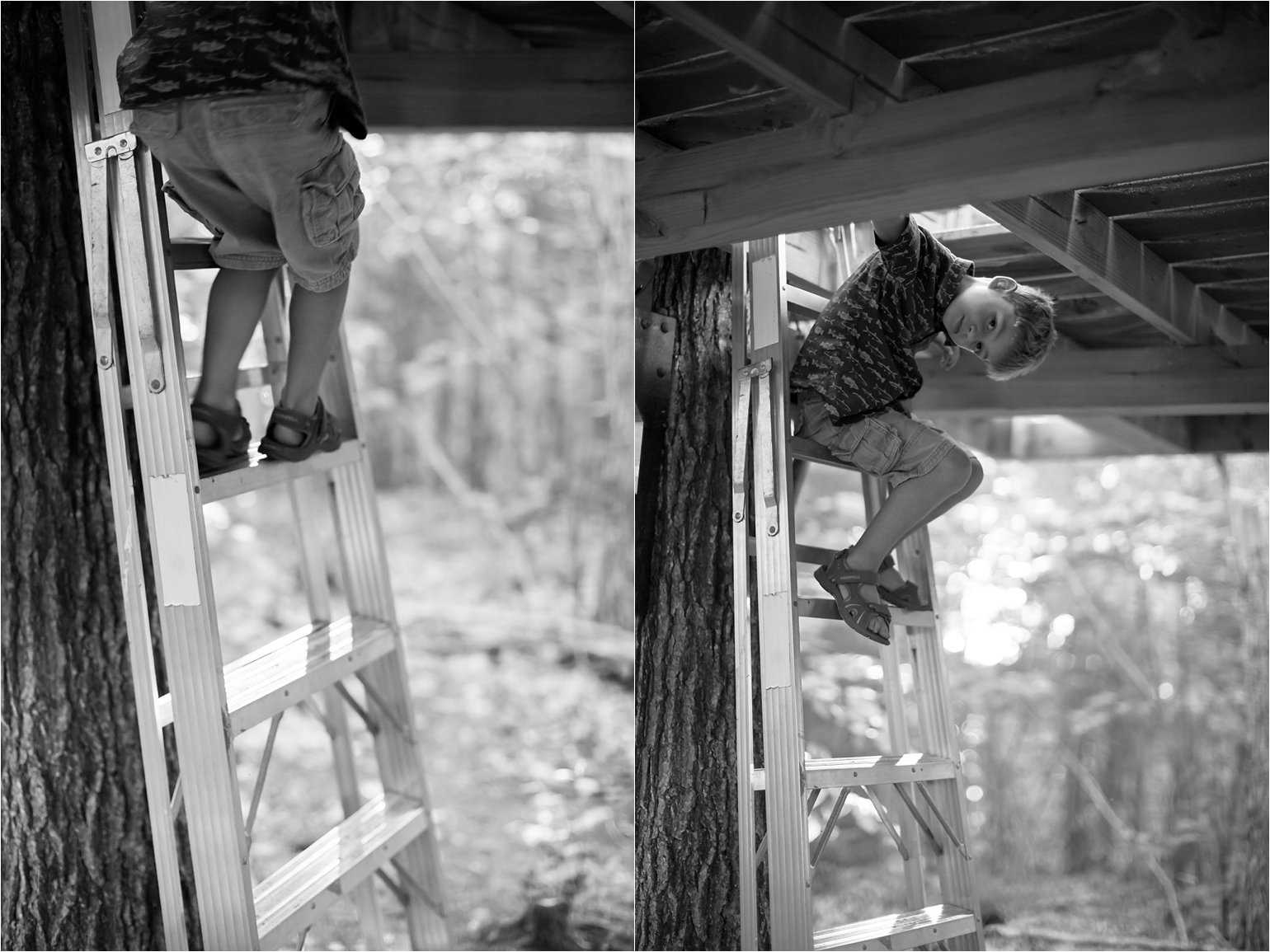 Climbing From the Treehouse © 2015 Maundy Mitchell