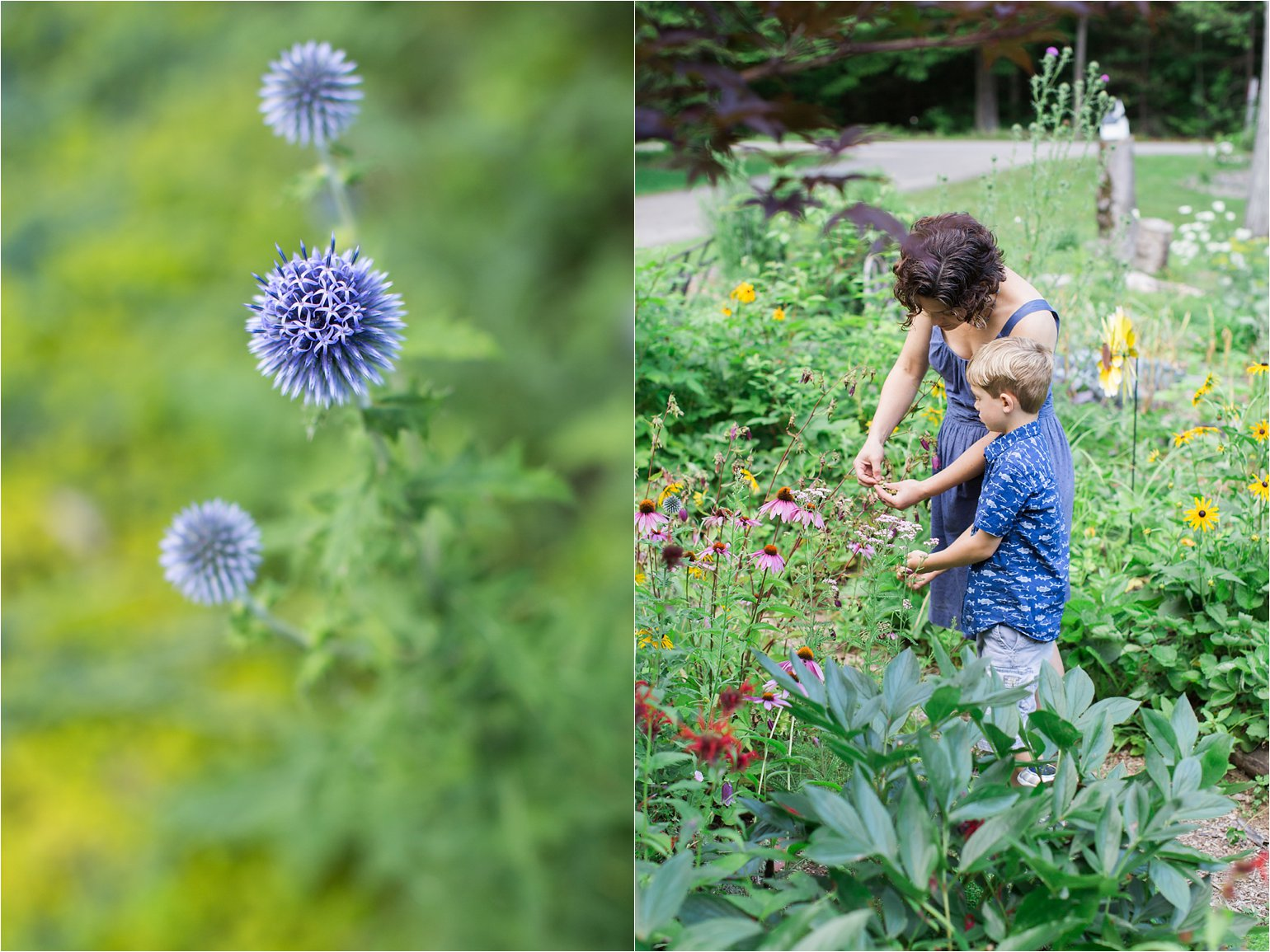 Flowers and Mother and Son Gardening © 2015 Maundy Mitchell