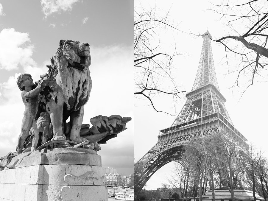 Statue-Lion-Eiffel-Tower-Black-and-White-Paris_0046.jpg