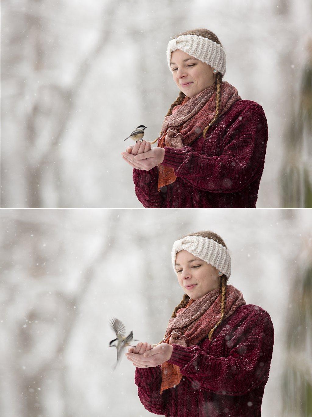 Hand-Feeding Chickadees_0002.jpg