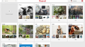 How to Build Creativity with Pinterest (not kill it)