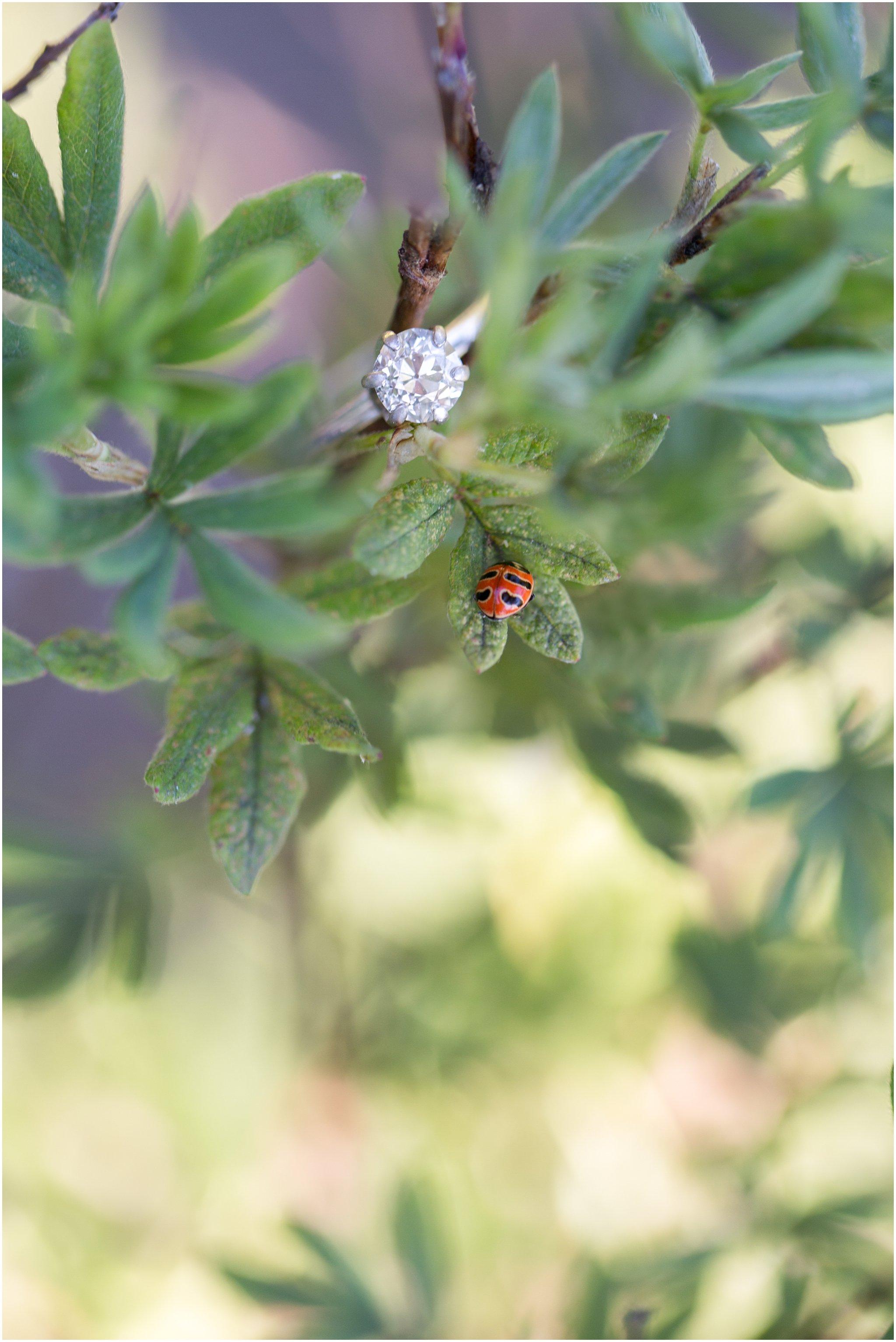 Engagement Ring with Ladybug