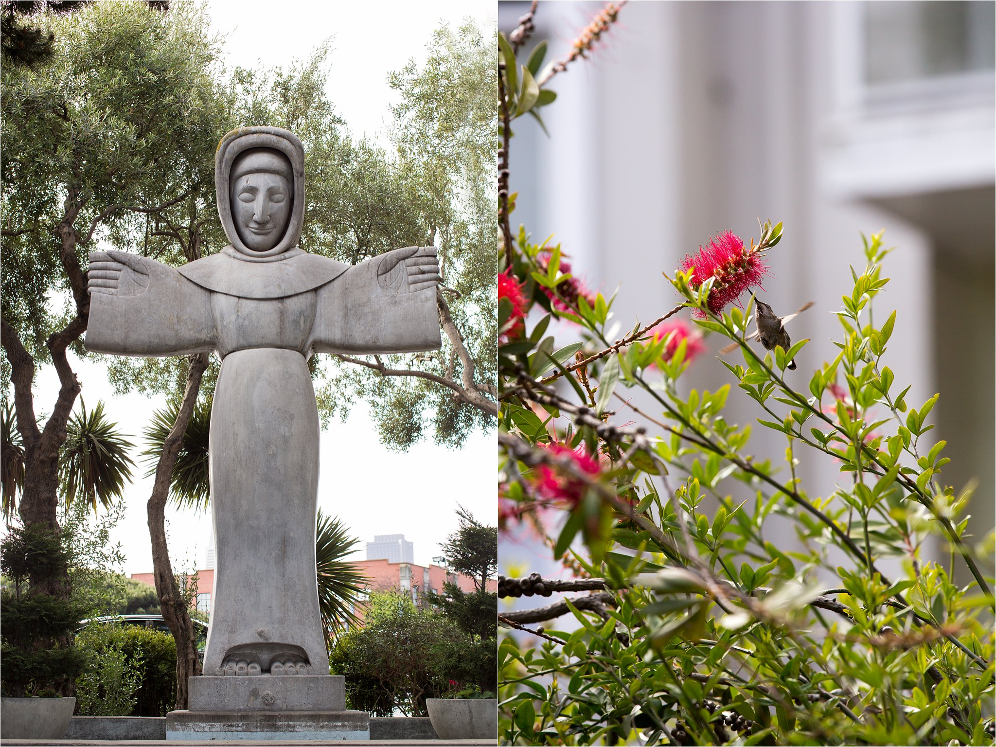 St. Francis Statue and Hummingbird
