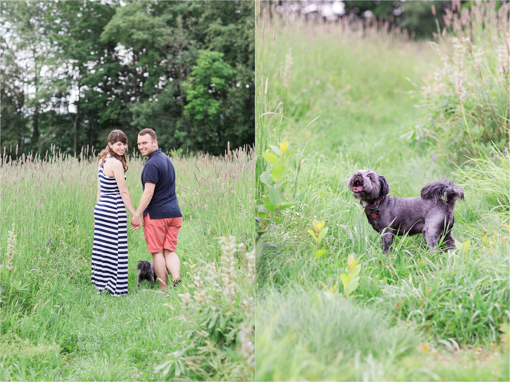 Engagement Photos with Dog © 2015 Maundy Mitchell_0002.jpg