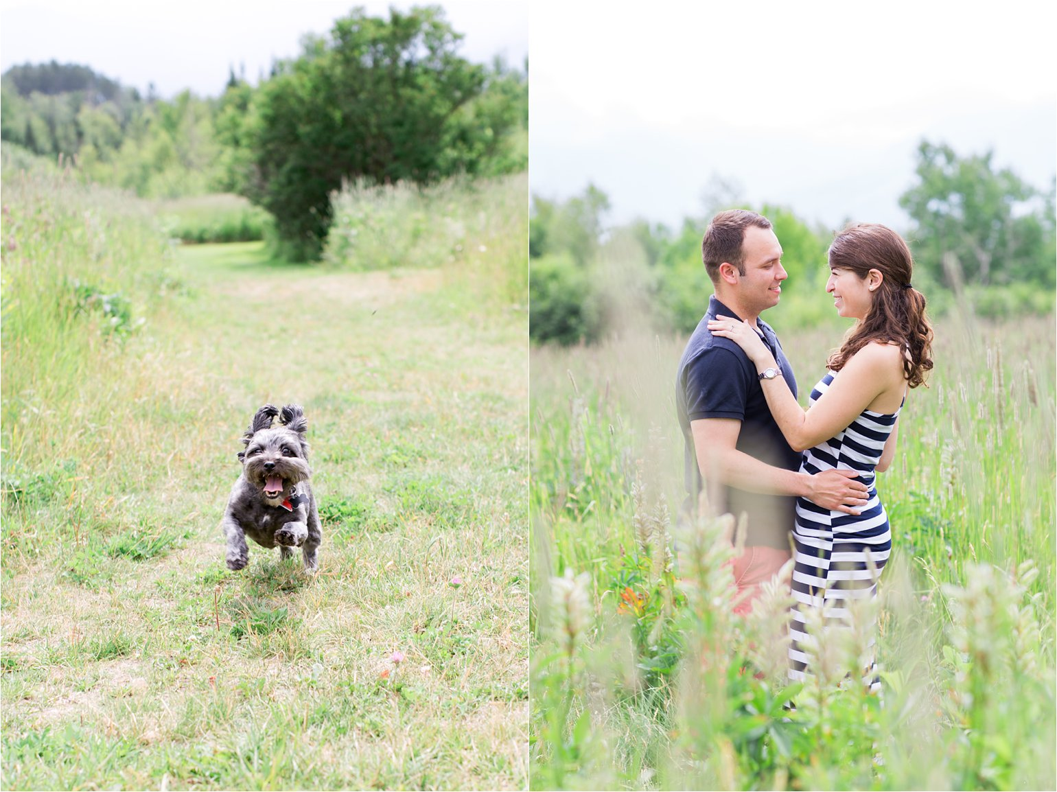 NH engagement photos with dog © 2015 Maundy Mitchell_0013.jpg