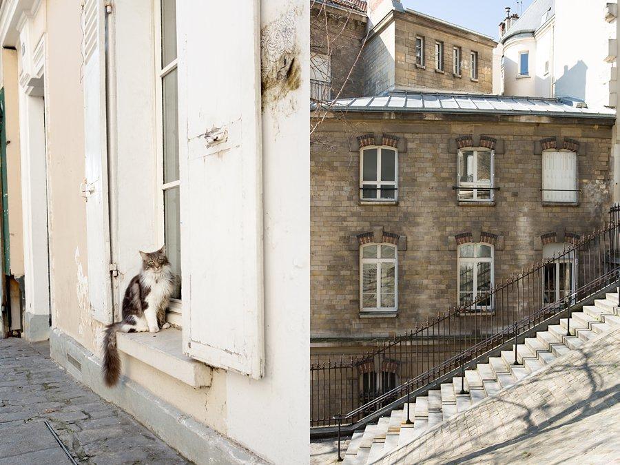 Cat-Steps-Architecture-Montmartre-Paris_0010.jpg