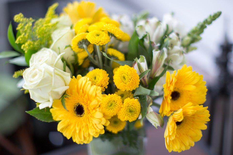 flowers_0023.jpg
